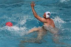 AW3Z0813_R.Varadi_R.Varadi (Robi33) Tags: summer men sports water swimming ball fight action basel swimmingpool watersports waterpolo sportspool waterpolochampionship