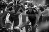 Philippe Gilbert on the Taaienberg (kristof ramon) Tags: cycling belgium phil cobbles worldtour procycling harelbeke philippegilbert taaienberg bmcracingteam e3prijs teambmc kramon kramonbe e3prijsharelbeke2012