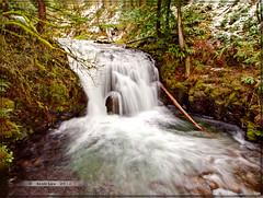Above Multnomah (Just Used Pixels) Tags: oregon river stream falls waterfalls slowshutter hdr multomah