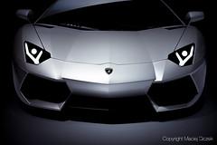 Lamborghini Aventador LP 700-4 (Maciej Siczek) Tags: light shadow sports car dark logo background super headlights lamborghini frontview aventador lp7004