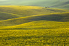 Moravian fields (Irene Becker) Tags: landscape spring europe land czechrepublic cz skalka moravia českárepublika èeskárepublika mygearandme mygearandmepremium mygearandmebronze mygearandmesilver mygearandmegold mygearandmeplatinum irenebecker irenebeckerorg