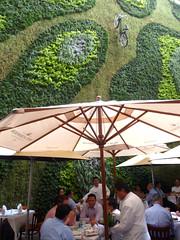 Restaurant Padrinos (joven_60) Tags: bicycle umbrella mexico mexicocity visualart gardenwall distritofederal restaurantpadrinos hotelhabitadowntown restaurantinmexco