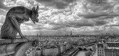 Gargoyle Paris (J.P | Photography) Tags: jp photography paris parisien parisian gargouille gargoyle nb bw blackandwhite noiretblanc france nikon 1024 tamron uga clouds cloudy eiffeltower toureiffel eiffel tour tower notredame cathdrale sky hdr jpphotography ps angle life wallpaper hdri