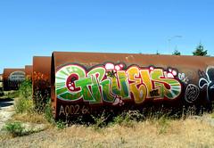 rodi / gruels (thesaltr) Tags: art yard graffiti oakland pipe ups bayarea eastbay rodi urbex dck ivk y001 gruels thesaltr