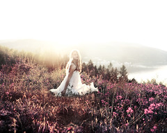 In A Dream (Sophia Alexis) Tags: alexis pink flower norway photoshop canon eos 7d 365 sophia cs5