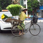 "Flower Bike <a style=""margin-left:10px; font-size:0.8em;"" href=""http://www.flickr.com/photos/14315427@N00/7287943272/"" target=""_blank"">@flickr</a>"
