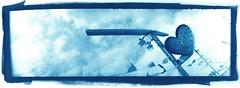 ♥ (cyanotype) (efo) Tags: bw oakland heart cyanotype usedcarlot altprocess mysteriouscamera