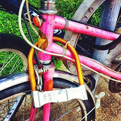 Chinese bike lock