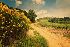 Monteriggioni (Allard One) Tags: trees italy plants nature architecture clouds rural vintage way landscape town spring nikon path curves farming scenic may panoramic retro foliage tuscany vista siena geography toscana toscane monteriggioni lente region fortress eclectic italie hilltop harsh bold gettyimages 2012 portaromana 1213 extremewideangle hillock toning comune 14mm famousplace locallandmark nationallandmark touristdestination nikcolorefexpro wineranks d700 medievalwalledtown nikond700 vergeeld nikkor1424mmf28 portafiorentina mediterraneancountry nikonfx allardone allard1 duohardstrak fullframepower 14towers winefarming allardschagercom surroundingstonewall monteala