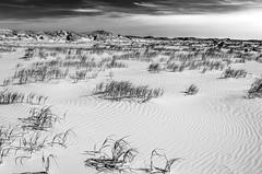 Ripples (Rense Haveman) Tags: coast vlieland coastaldunes vliehors coastallandscape monochromelandscape pentaxk5 rensehaveman