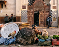 Tirandola (Don Csar) Tags: africa door plaza people square vendedor gallo puerta university mosque morocco fez entrada northamerica mezquita rooster marruecos seller entry fes laying echado karaouiyne seffarinesquare