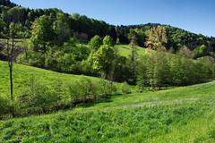 what a day for a daydream II (MH *) Tags: green landscape weide pentax meadow wiese himmel berge gras grn blau limited landschaft wald bume schwarzwald blackforest k3 21mm badenwuerttemberg waldkirch sdbaden sexau mhlenbach