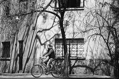 Last (magiksap) Tags: street people blackandwhite blancoynegro monochrome mxico composition dark df monochromatic conceptual canoneos bnw streetphotograpy canonphoto cdmx rotros canon7d