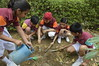 "Primary Jivakul Club - Gardening (2) • <a style=""font-size:0.8em;"" href=""http://www.flickr.com/photos/99996830@N03/26826686825/"" target=""_blank"">View on Flickr</a>"