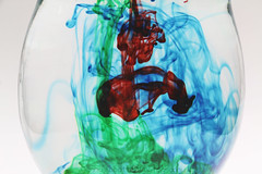 64/365 (JennaAbbottPhotography) Tags: color water watercolor 365 foodcoloring 365day 365dayproject