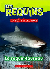 Le requin-taureau (Vernon Barford School Library) Tags: new school fish animals french reading book shark high marine underwater library libraries reads books read paperback cover junior sharks covers bookcover middle vernon undersea français recent bookcovers languages nonfiction paperbacks foreignlanguages foreignlanguage barford lote softcover sandtigersharks marineanimals secondlanguage languagesotherthanenglish vernonbarford softcovers secondlanguages 9781443145596