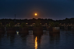 Strawberry Moon Over the Old Railroad Bridge (Dave Reasons) Tags: railroad bridge summer moon building water architecture night season evening florence construction strawberry seasons unitedstates space alabama nighttime transportation northamerica summertime lunar tennesseeriver dogdays shoals summertide sunnyseason