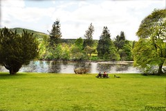 By the river (mistinguette.mistinguette) Tags: trees bike river bench scotland perthshire tay banks