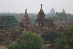 2016myanmar_0379 (ppana) Tags: bagan alodawpyay pagoda ananda temple bupaya dhammayangyi dhammayazika gawdawpalin gubyaukgyi myinkaba wetkyiin htilominlo lawkananda lokatheikpan lemyethna mahabodhi manuha mingalazedi minochantha stupas myodaung monastery nagayon payathonzu pitakataik seinnyet nyima pagaoda ama shwegugyi shwesandaw shwezigon sulamani thatbyinnyu thandawgya buddha image tuywindaung upali ordination hall