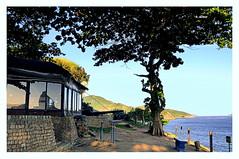 Tranquilidade (o.dirce) Tags: luz nature brasil riodejaneiro mar casa natureza paisagem arvore niteri odirce
