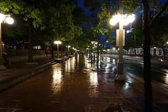 Summer rains on Sussex, Ottawa. (beyondhue) Tags: rain sidewalk sussex drive ottawa ontario night dark beyondhue street shot walk people reflection wet raining weather dusk lamp light city downtown tree