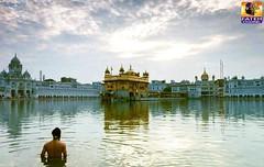 - 04 - 07 - 2016 (Fateh_Channel_) Tags: punjab amritsar gurudwara goldentemple gurbani