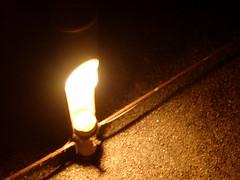 mar12 039 (owseki) Tags: nightwalk rikugien mar12