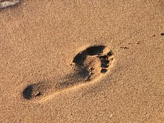 Footprints-in-Sand-Beach__1072912 (Public Domain Photos) Tags: sea beach closeup sand footprints freephotos publicdomains