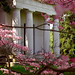 Cincinnati - Spring Grove Cemetery & Arboretum Hinsch Mausoleum
