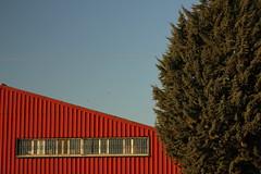 Triangular Red Washboard (Lig Ynnek) Tags: building tree window lines triangle spainsegoviamred