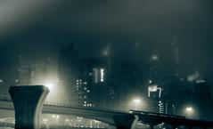 Ghost Train (Hans Maso) Tags: night 35mm canon highway dubai metro uae 5d markiii ef35mmf14l canoneos5dmarkiii