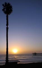 San Diego sunset (Carbon Arc) Tags: ocean sunset sun tree water pier view pacific sandiego lifeguard lajolla palm vista shack scrippspier
