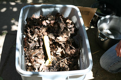 4781 (ecologycenterberkeley) Tags: berkeley bin demonstration workshop worm compost castings composting ecohouse 6912 june2012 carriebennett photobybeckcowles compostingforrenters
