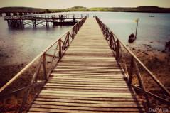 Per (Drica Melo - DM) Tags: praia gua brasil mar barcos areia dia cu ponte litoral madeira ilha pernambuco caminho norte nordeste itapissuma