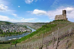 The ruins of Landshut Castle loom over Bernkastel (Bn) Tags: blue sky mountain castle river germany geotagged deutschland boat spring ruins wine hiking vessel vineyards valley vista viewpoint allemagne duitsland mosel kasteel rheinlandpfalz slopes moselle bernkastel landshut burgruine bernkastelkues kues moezel chteaufort burglandshut hhenburg rijnlandpalts geo:lon=7073683 geo:lat=49910577