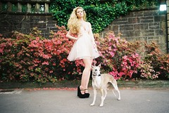 (Benedict.) Tags: park pink flowers summer ballet dog cute film girl 35mm hair spring model long dof dress pentax cut country blossoms grain skirt whippet prom blonde spotmatic blooms pollock tulle