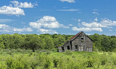 A Time Forgotten (Robby Ryke) Tags: old overgrown farmhouse antique decay greens naturalcolors beautifulspringday cloudsinthesky timeforgotten