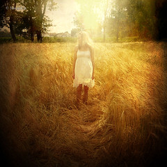 .. with a Summer feeling ... (MargoLuc) Tags: light woman selfportrait texture me girl field sunshine golden cornfield wind blondehair whitedress summerfeeling platinumheartaward