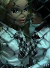 T.a.t.u. (2011) (tovarish_barbie) Tags: dolls group tatu afd