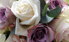 Bridal Bouquet Close Up (Vicky Spence) Tags: