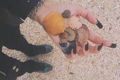 Tacto (photographyvisor) Tags: naturaleza black beach playa arena caracoles tacto