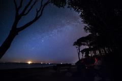 Milchstrae (georgmohr) Tags: warnemnde nacht outdoor grillen milkyway sternenhimmel nachthimmel nienhagen gespensterwald milchstrase