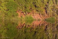Embalse de Eiras II (Ferruxe65) Tags: paisajes naturaleza nature water forest reflections landscapes dam ngc galicia bosque rivers reflexos rios pontevedra reflejos embalse auga canoneos7d fornelosdemontes riooitaven embalsedeeiras ef100mmf28lmacro