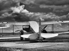 Dragon Rapide (davepickettphotographer) Tags: uk classic wings aviation dh duxford cambridgeshire cloudscape airfield warmuseum dehavilland rapide olympuscamera davepickettphotographer theimperialwarmuseumuk