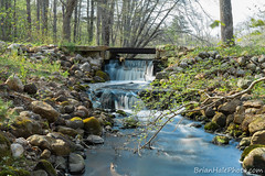 4watermark (Brian M Hale) Tags: ri trees west fall water river island waterfall spring woods stream brian greenwich newengland falls rhode hale secluded stepstone stepstonefalls brianhalephoto