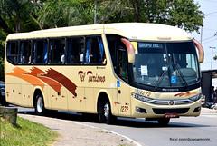 1272 (American Bus Pics) Tags: tel telturismo