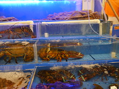 At Noryangjin fish market to see the variety of different fish!