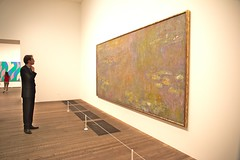 At The Gallery 1 (elhawk) Tags: london gallery tatemodern waterlilies monet