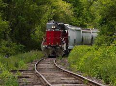 Jungle Railroadin' (Joseph Bishop) Tags: railroad train track tracks rail railway trains rails railfan brantford burford 3840 sor rlk emd gp402 ingenia necr southernontariorailway rlhh burfordspur