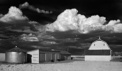 the Zimmerman Farm - Infrared (eDDie_TK) Tags: rural ir colorado farming barns co infrared farms rurallife ruralliving weldcounty whitebarns weldcountyco